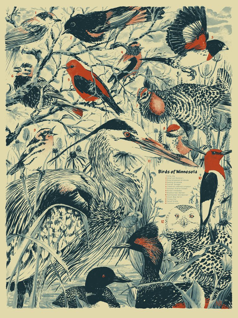 Birds of Minnesota poster by Nick Bensch
