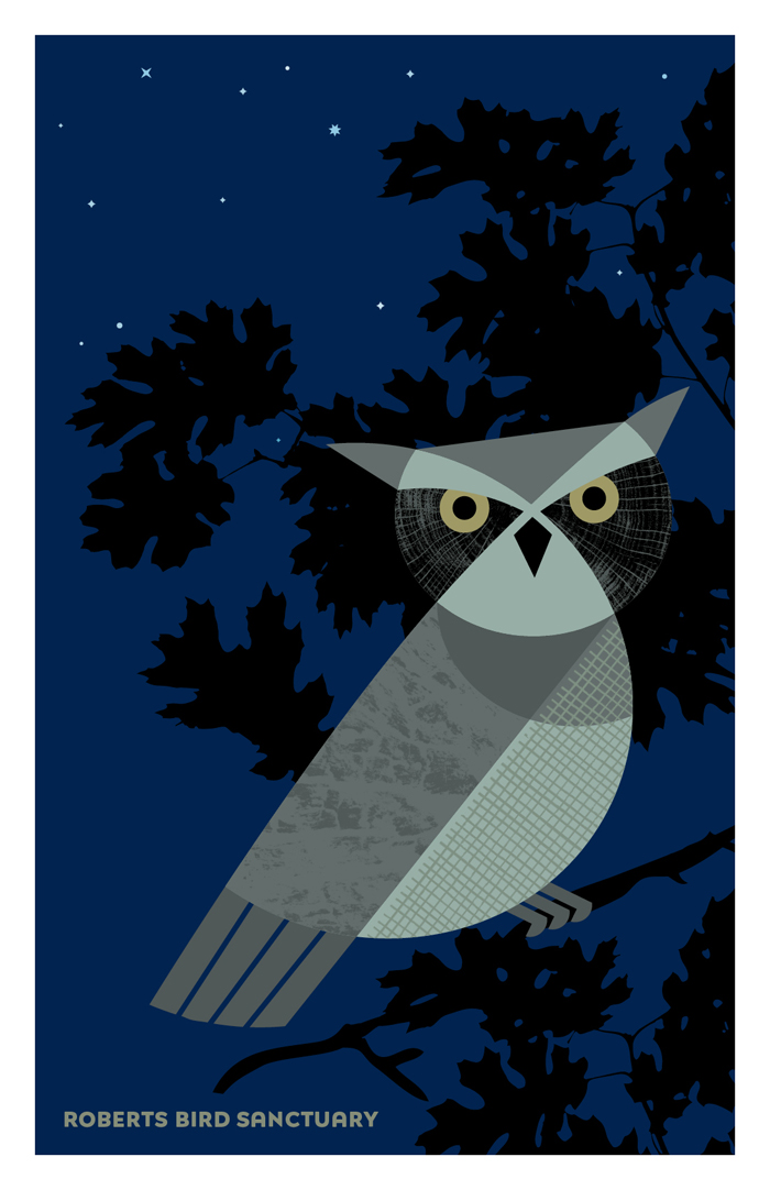 Illustration of Great Horned Owl from Fantastic Beasts set of postacrds