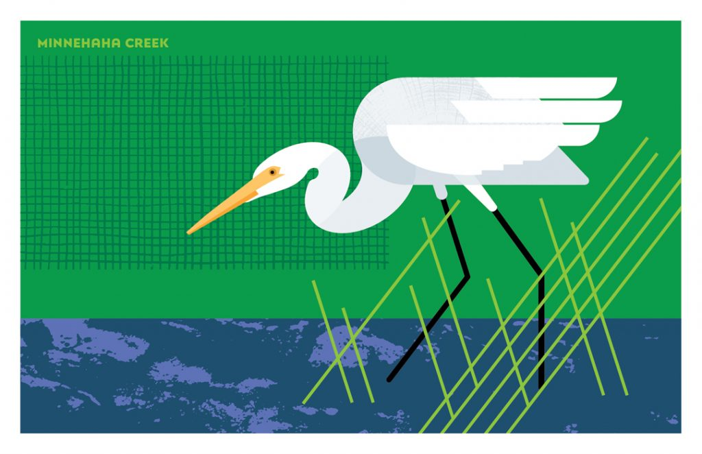 Illustration of Great White Egret from Fantastic Beasts set of postacrds