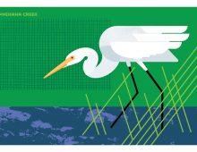 Illustration of Great White Egret from Fantastic Beasts set of postacrds