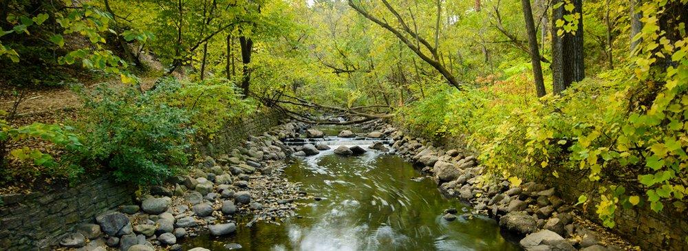 Photo of Minnehaha Creek by Jason Ozaeta