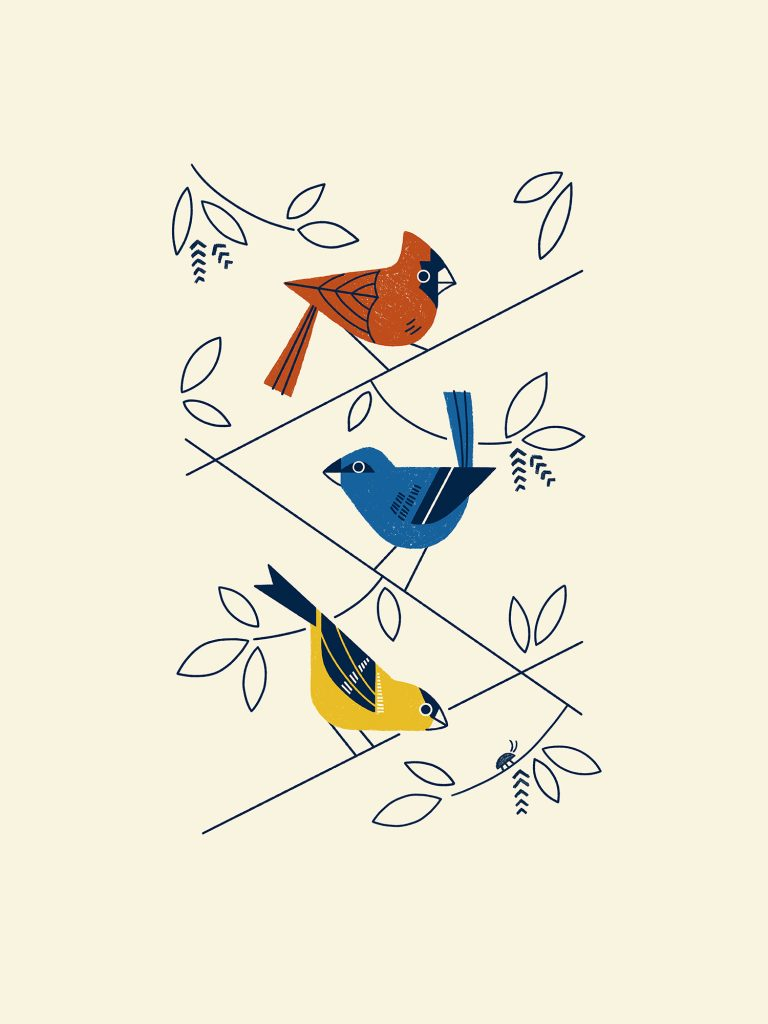 Minnesota Bird Trio poster by Andrew Benson