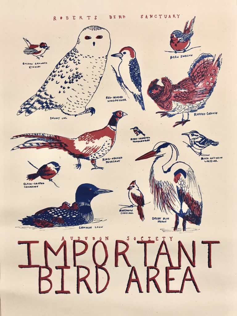 Important Bird Area poster by Meher Khan